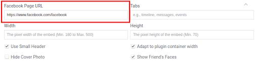 Facebook Page URL.